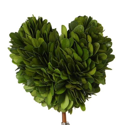 TOPIARY HEART-L
