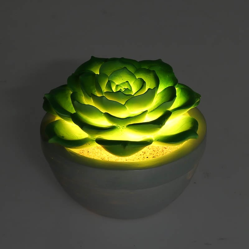 ECHEVERIA L.E.D. LIGHT