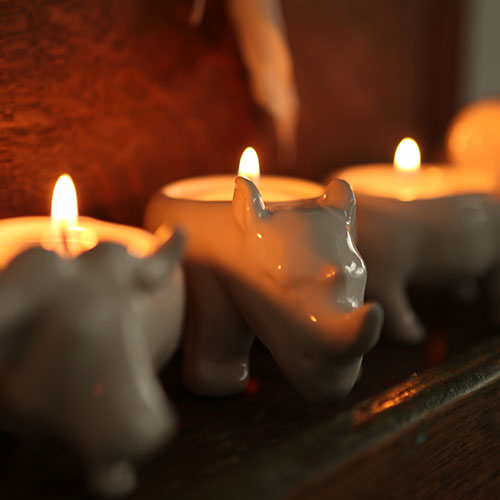 GAUR TEALIGHT HOLDER
