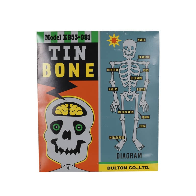 TIN BONE