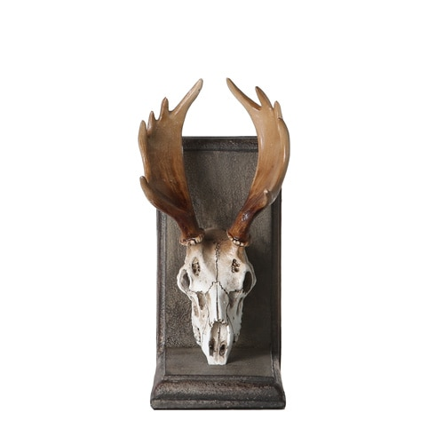 BOOKENDS SKULL HEAD -B