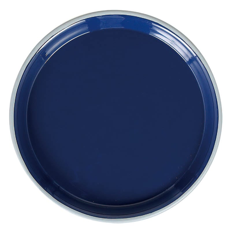 DASHINGTON TRAY L INK BLUE
