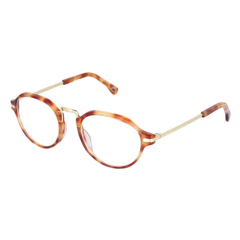 READING GLASSES TORTOISE 2.5