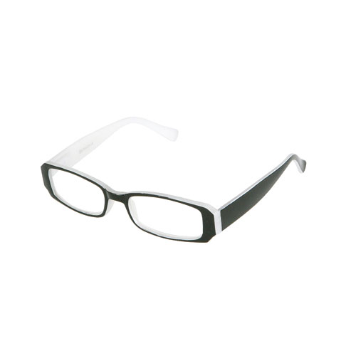 READING GLASSES 2.5