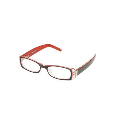 READING GLASSES 2.5