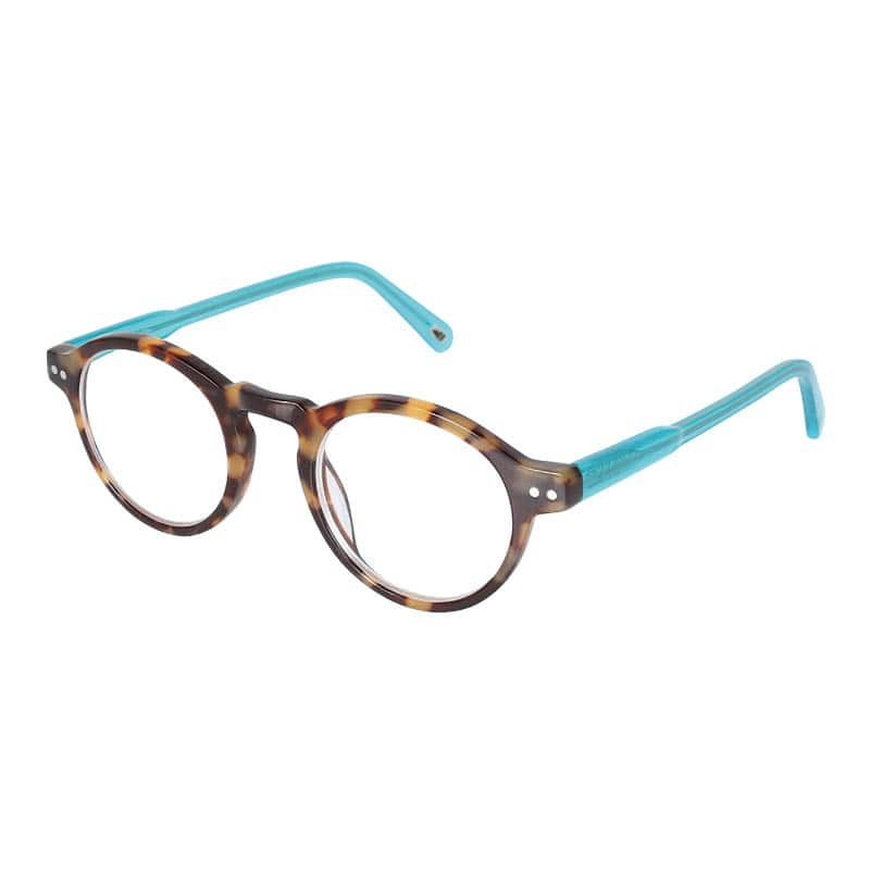 READING GLASSES TORTOISE-C.BL