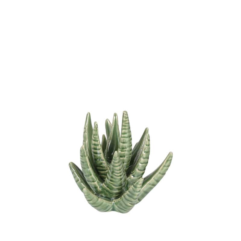 CACTUS RING HOLDER ALOE