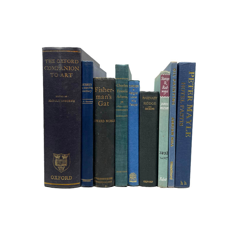 USED BOOK BLUE-25cm