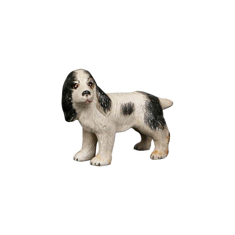 LONG EARED DOG