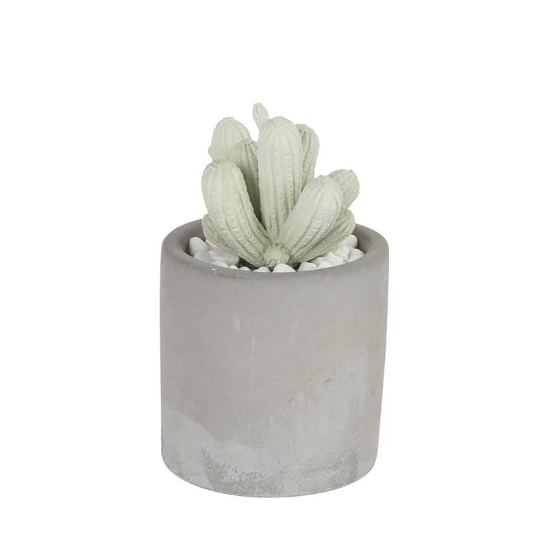 CACTUS FRAGRANCE DIFFUSER SPRING FLOWER