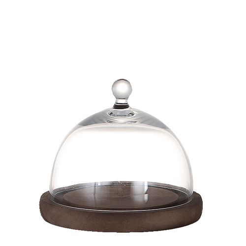 GLASS DOME  MIRROIRS S