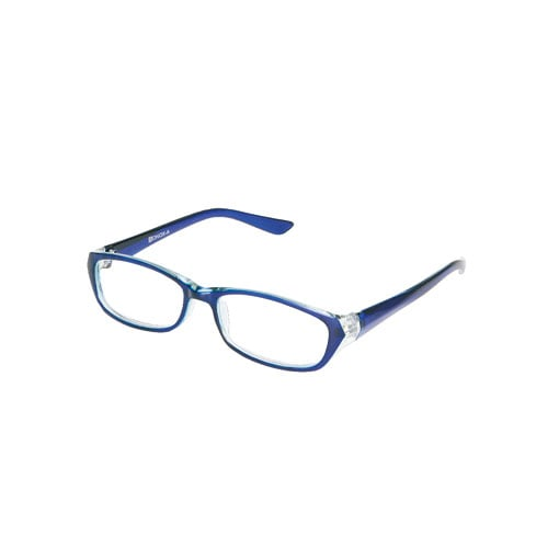 READING GLASSES  NB/CLEAR